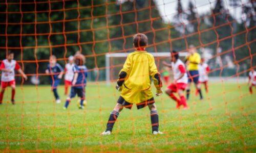 Estudios Superiores De Especialización En Fútbol Base